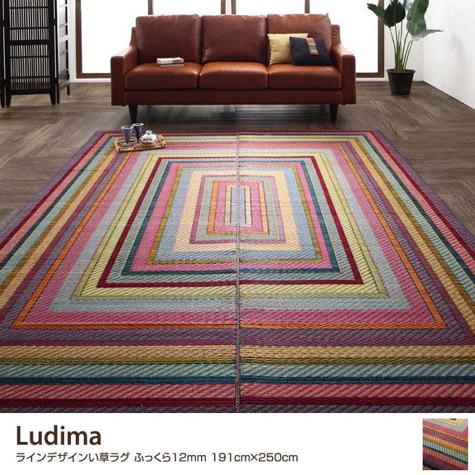 Ludima ラインデザインい草ラグ ふっくら12mm 191cm×250cm