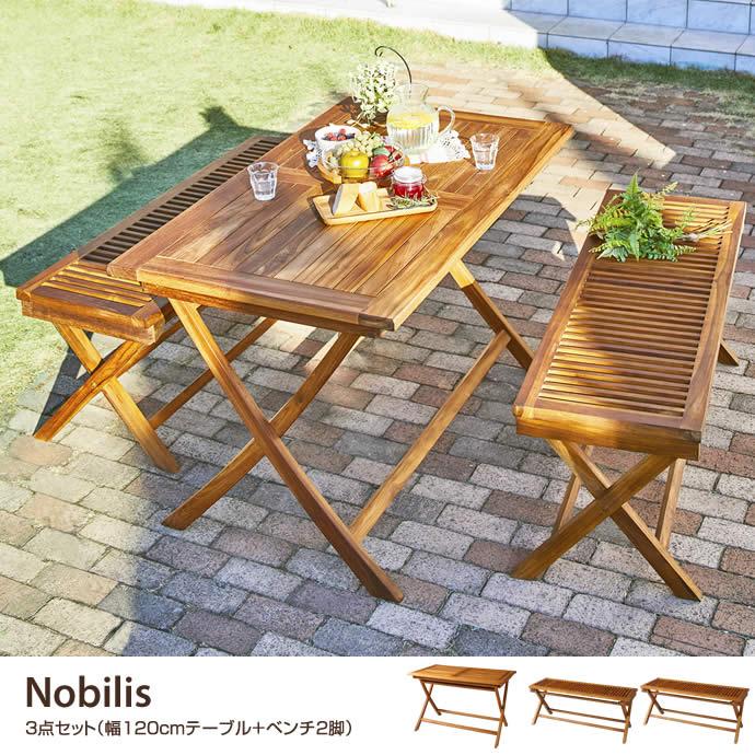 【3点セット】Nobilis 幅120cmテーブル+ベンチ2脚