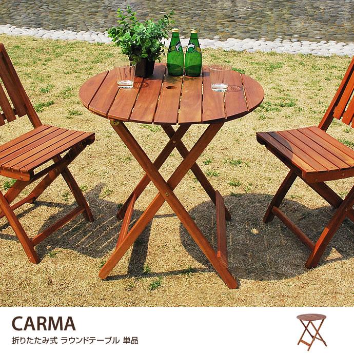 CARMA ラウンドテーブル