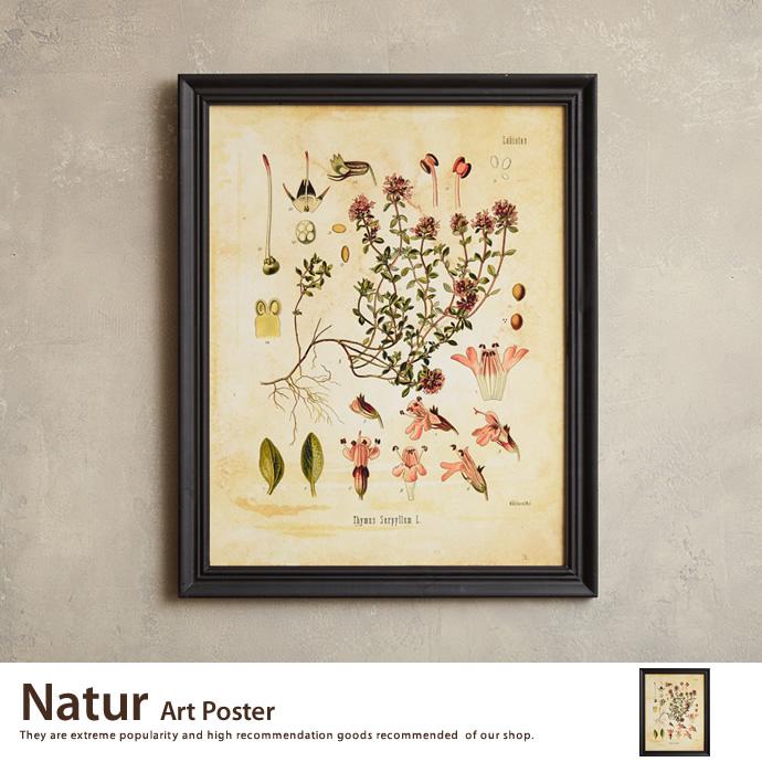 Natur Art Poster