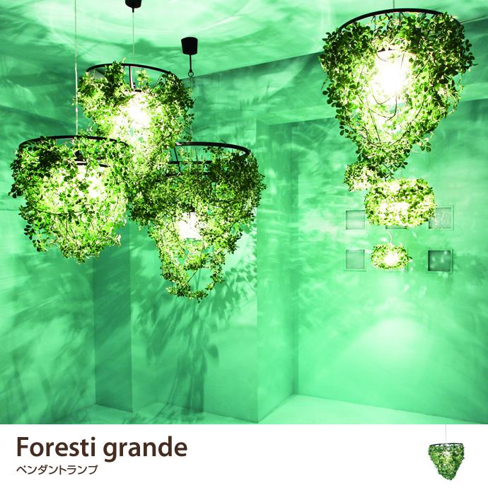 Foresti Grande