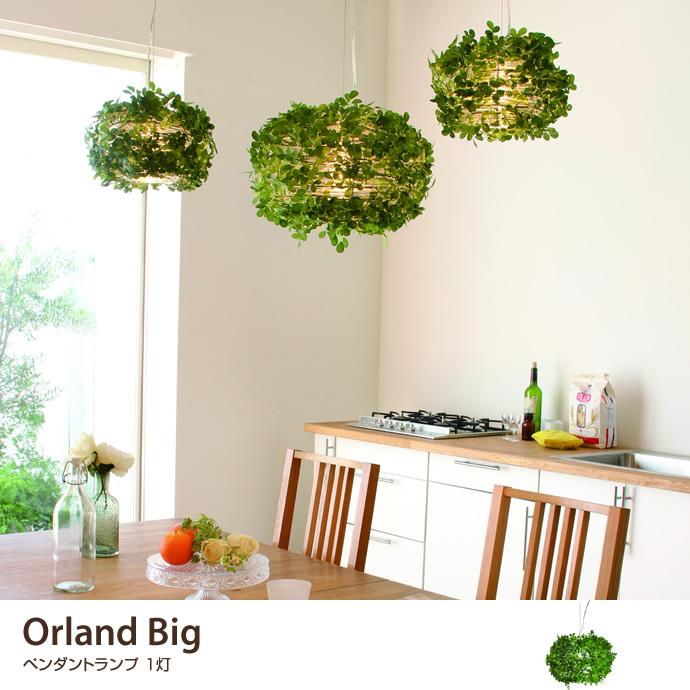 Orland Big