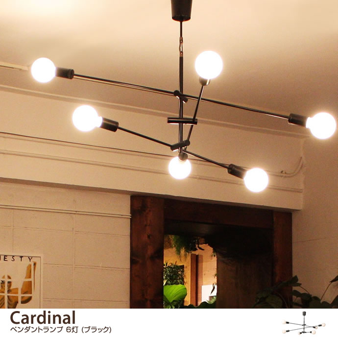 Cardinal ペンダントランプ6灯(ブラック)