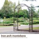 Iron arch motebero