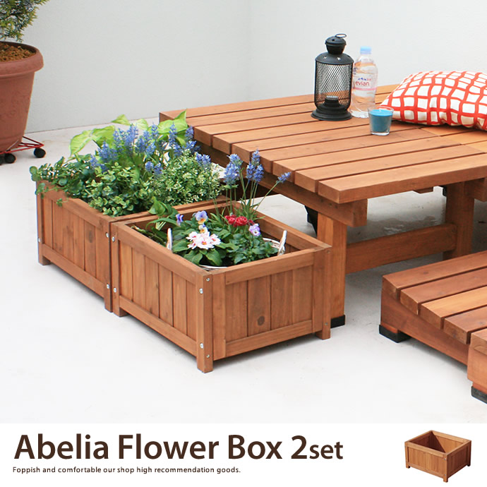 Abelia Flower Box 2Set