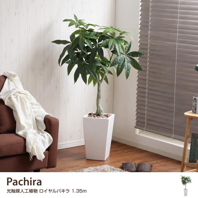 【高さ1.35m】Pachira 光触媒人工植物 ロイヤルパキラ