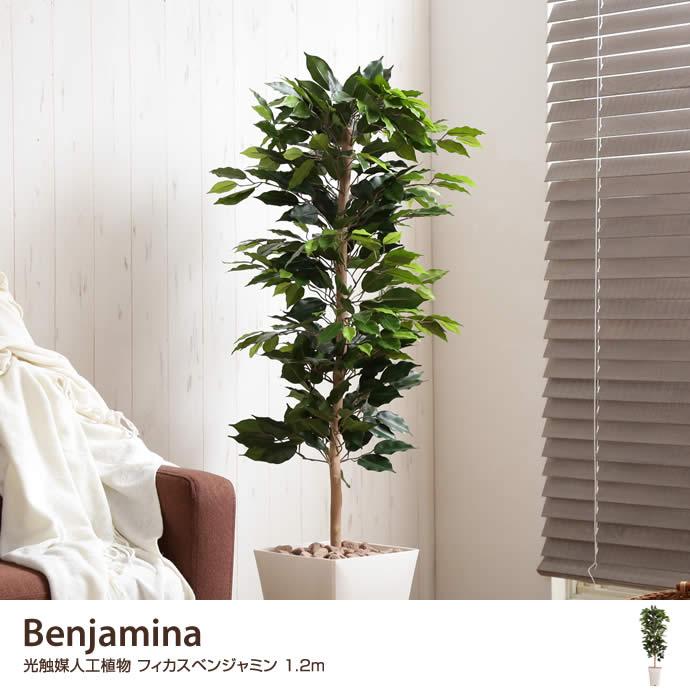 【高さ1.2m】Benjamina 光触媒人工植物 フィカスベンジャミン