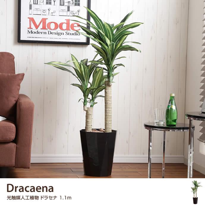 【高さ1.1m】Dracaena 光触媒人工植物 ドラセナ