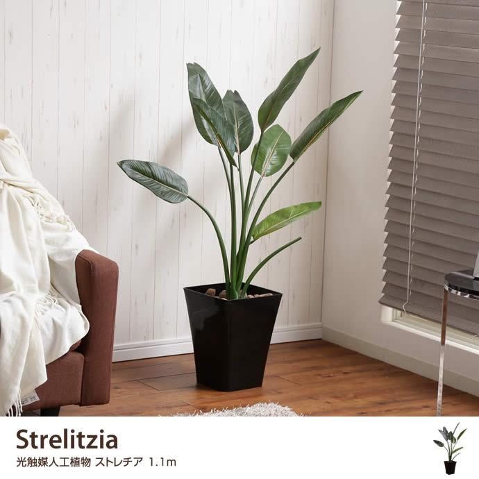 【高さ1.1m】Strelitzia 光触媒人工植物 ストレチア